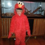 Nate as Elmo (for the second year).